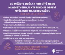 web II Prevence sebevražd u dětí a mladistvých